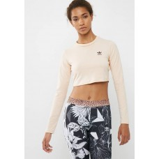adidas Originals Women SC crop tee Cream JLSGBJG